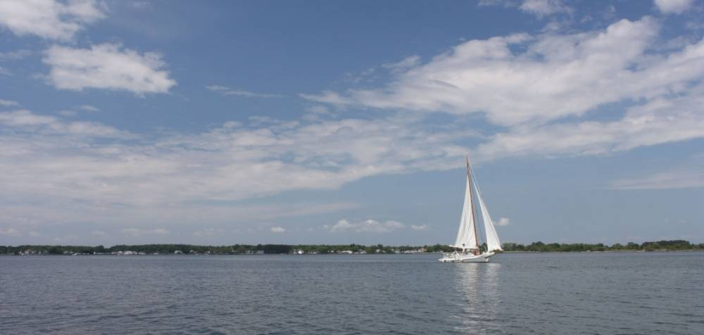NOAA, USGS & partners predict larger summer 'dead zone' for Chesapeake Bay