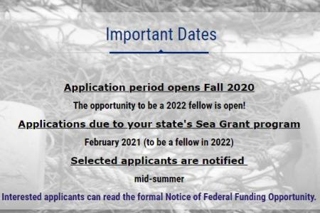 Knauss Fellowship and the Fisheries-Sea Grant joint graduate fellowship - 2021